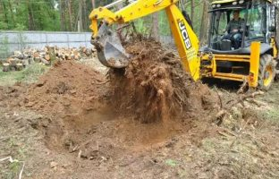 Расчистка участка по цене от от 3 000 руб/сотка